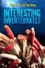 Interesting Invertebrates