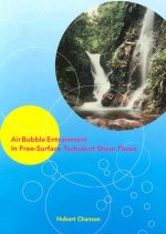 Air Bubble Entrainment in Free-surface Turbulent Shear Flows