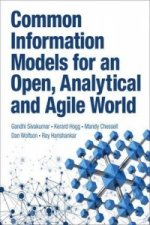Common Information Models for an Open, Analytical and Agile