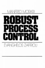 Robust Process Control