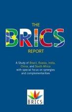 BRICS Report