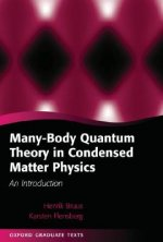 Many-body Quantum Theory in Condensed Matter Physics