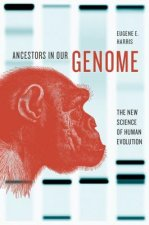 Ancestors in Our Genome