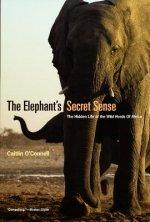 Elephant`s Secret Sense - The Hidden Life of the Wild Herds of Africa
