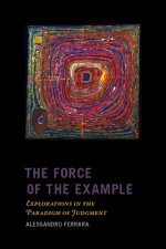Force of the Example