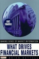 What Drives Financial Markets