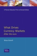 What Drives Currency Markets
