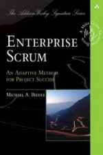 Enterprise Scrum