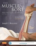 Muscle and Bone Palpation Manual with Trigger Points, Referral Patterns and Stretching