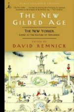 New Gilded Age
