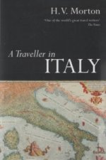 Traveller in Italy