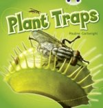 Plant Traps (Blue B ) NF 6-pack