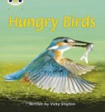 Phonics Bug Hungry Birds Phase 5 (Non-Fiction)