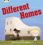 Phonics Bug Different Homes Phase 5 (Non-Fiction)