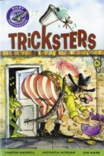 Navigator Fiction Year 3 Tricksters Group Reading Pack 09/08