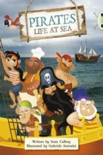 Bug Club Non-fiction a Pirate's Life Purple B/2C 6-pack