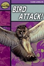 Rapid Stage 1 Level B: Bird Attack! Reader Pack of  3 (Series 2)