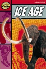 Rapid Stage 2 Set B: Ice Age Reader Pack of 3 (Series 2)