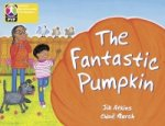 Primary Years Programme Level 3 the Fantastic Pumpkin 6 Pack