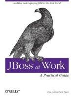 JBoss at Work