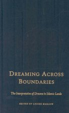 Dreaming Across Boundaries