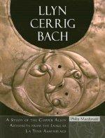 Llyn Cerrig Bach