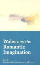 Wales and the Romantic Imagination