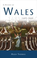 History of Wales 1485-1660
