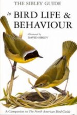 Sibley Guide to Bird Life and Behaviour