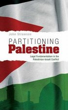 Partitioning Palestine
