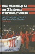 Making of an African Working Class