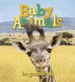 Baby Animals in Grasslands