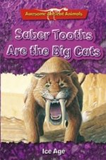 Saber Tooths are the Big Cats: Ice Age