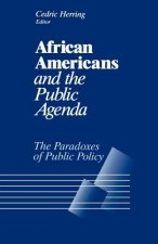 African Americans and the Public Agenda