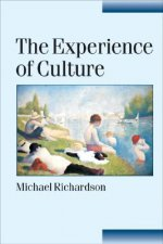 Experience of Culture