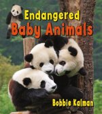 Endangered Baby Animals