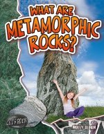 What are Metamorphic Rocks?
