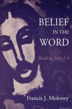 Belief in the World