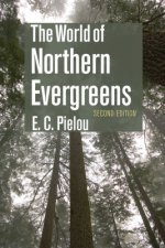World of Northern Evergreens