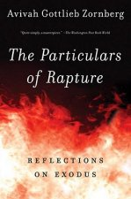 Particulars of Rapture