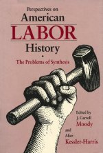 Perspectives on American Labor History