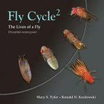 Fly Cycle 2ed