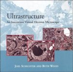 Ultrastructure