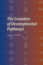 Evolution of Developmental Pathways