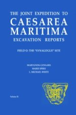 Joint Expedition to Caesarea Maritima Excavation Reports