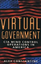 Virtual Government