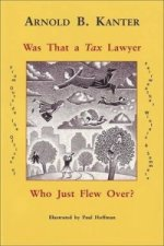 Was That A Tax Lawyer Who Just Flew Past My Window?