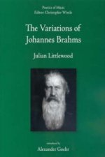 Variations of Johannes Brahms