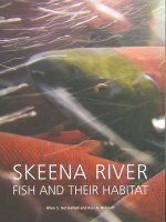 Skeena River Fish and Their Habitat