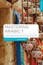 Mastering Arabic 1
